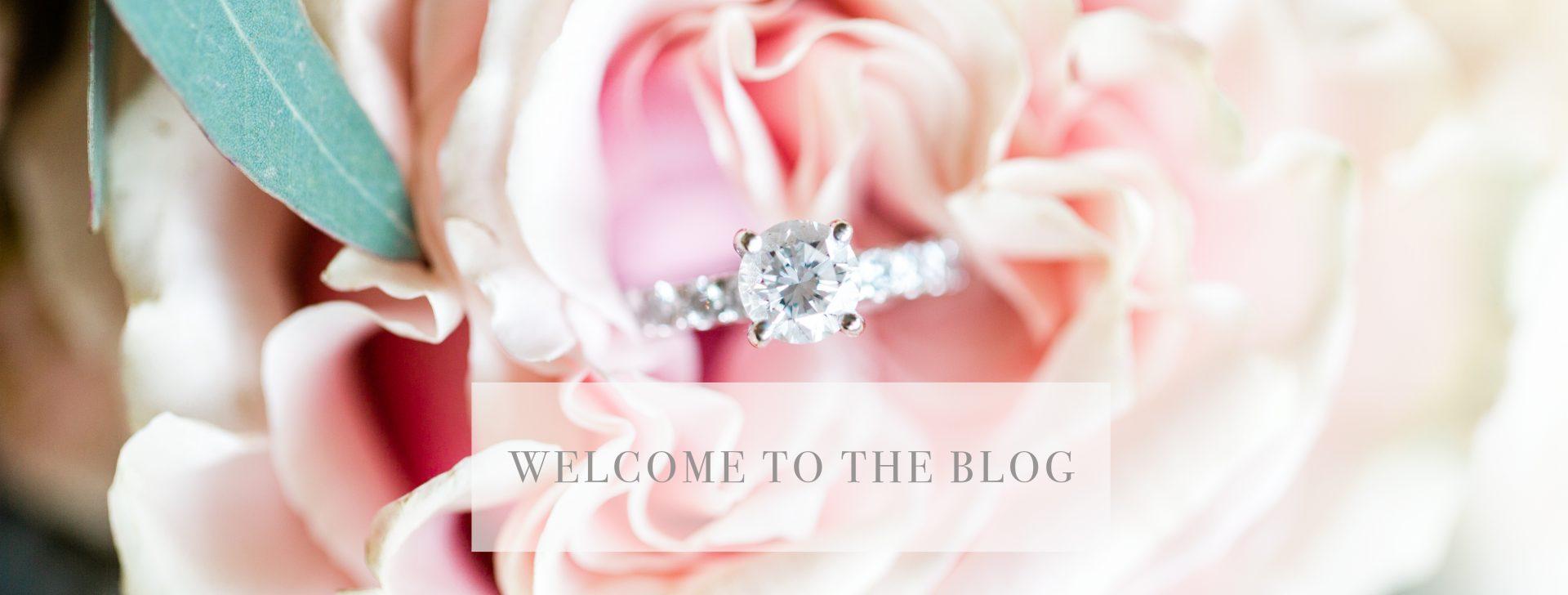 Wedding | Cortese Wedding Photography & Film